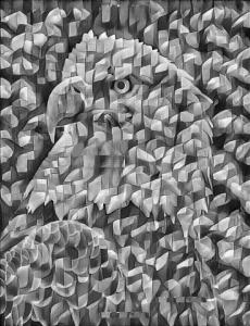 eagle_cubist